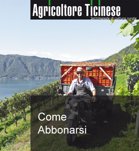 Agricoltore Ticinese